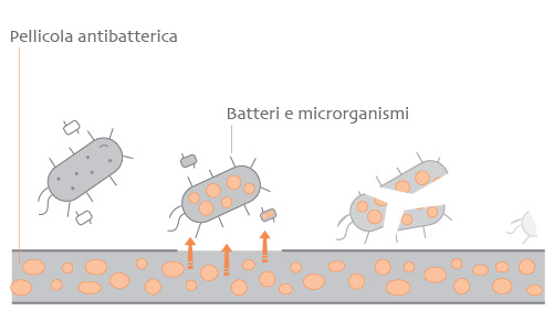 Sanificazione Pisano - pellicola antibatterica