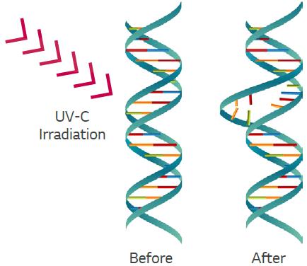 Sanificazione Pisano - Radiazione UVCzione